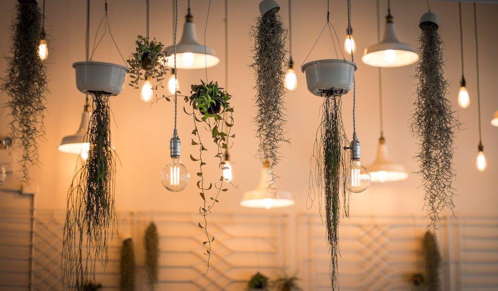 Lámparas para el hogar ¿Cuál elegir? + CONSEJOS 1
